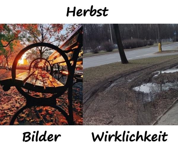Herbst - Bilder und Wirklichkeit - xdPedia.de (1475)