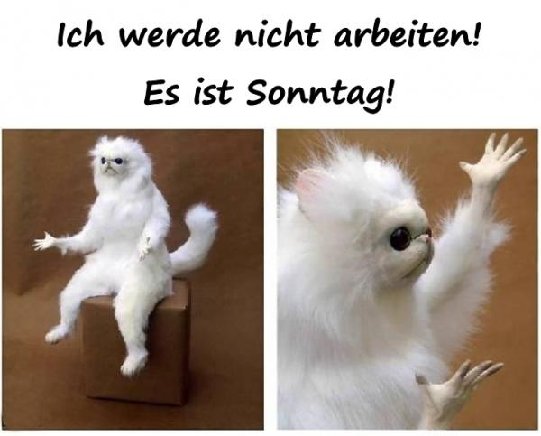 Ruhetag Lustige Bilder Lustige Spruche Lustige Humor Xdpedia