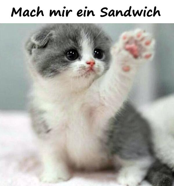 Mach mir ein Sandwich - xdPedia.de (2110)
