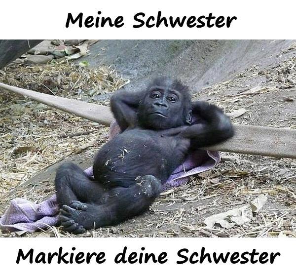 Schwester Lustige Sprüche Humor Schwester Markierung Xdpedia
