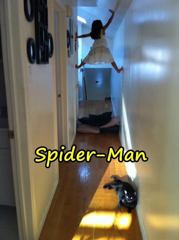 Spiderman Spiderman Lustige Bilder Beste Meme Spinne Xdpediade