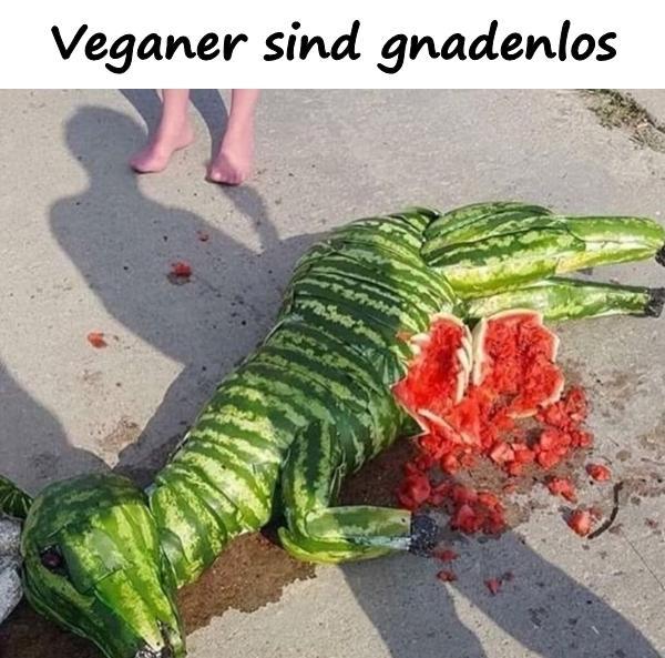 Vegetarier Humor Meme Vegetarier Lustige Spruche Xdpedia De 1