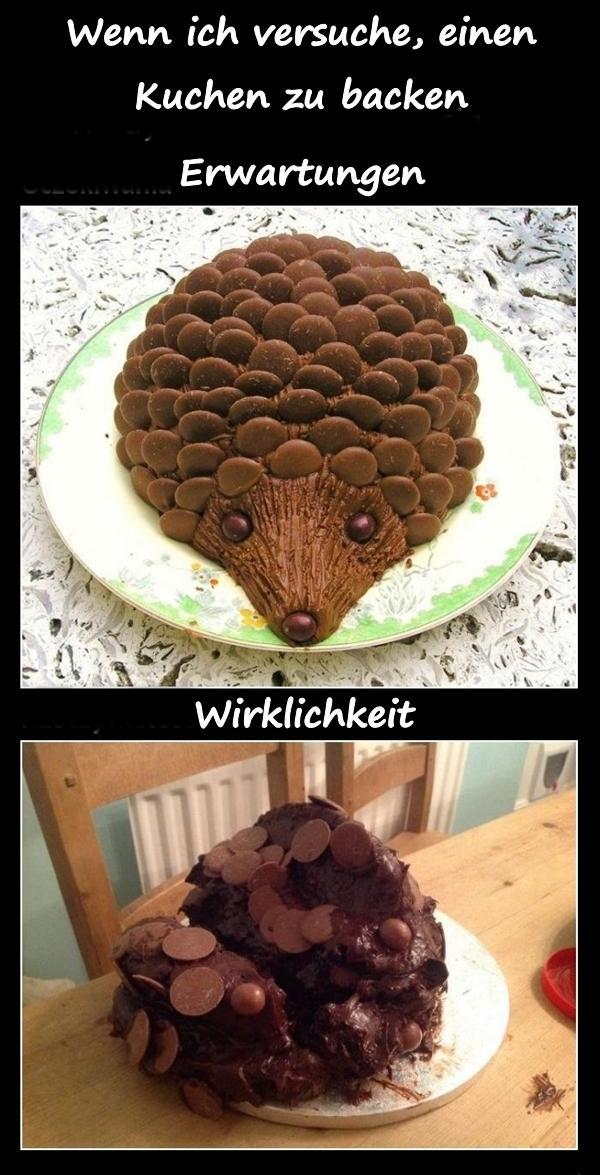 Kuchen Beste Kuchen Lustige Bilder Lustige Spruche Xdpedia De
