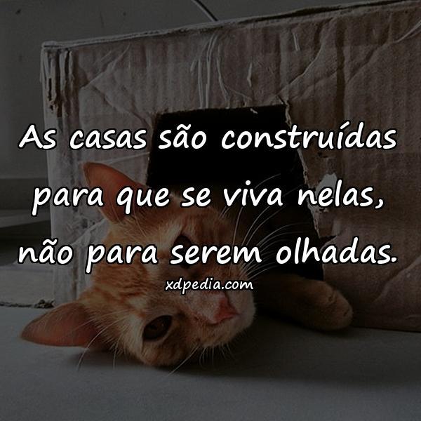 Frases Amor Vida Amizade Piadas Engracadas Imagens Para