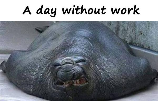 A day without work