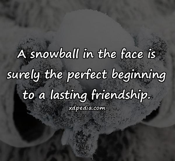 A snowball in the face is surely the perfect beginning to a lasting friendship.