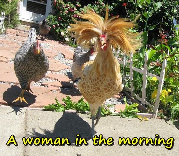A woman in the morning