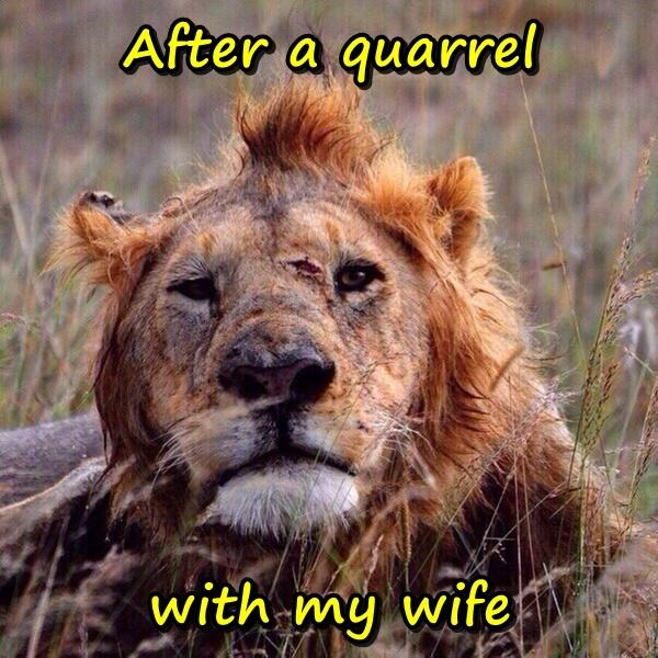 After a quarrel with my wife
