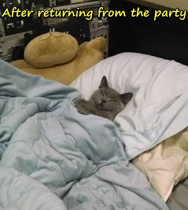After returning from the party