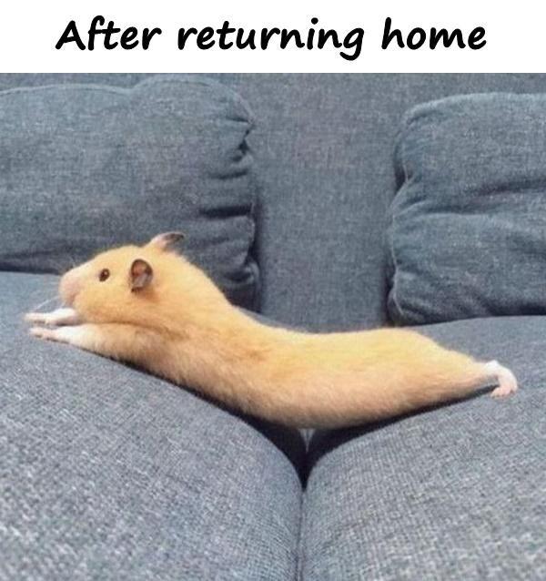 After returning home