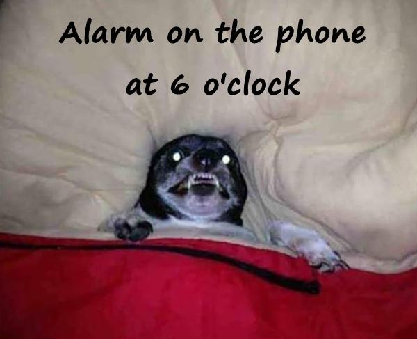 Alarm on the phone at 6 o'clock