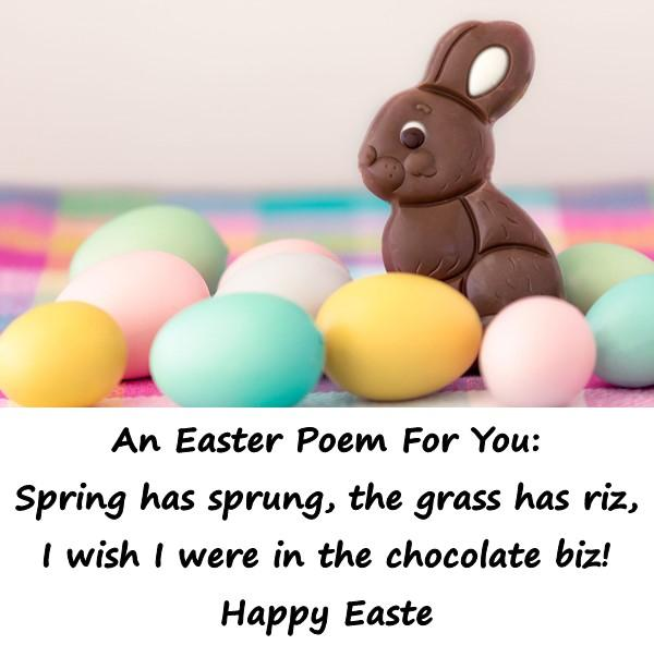 An Easter Poem For You: Spring has sprung, the grass has riz, I wish I were in the chocolate biz! Happy Easter.