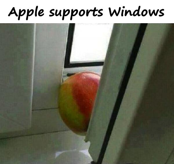 Apple supports Windows