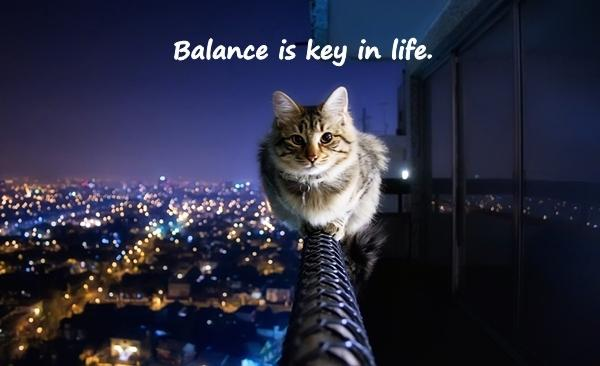 Balance is key in life.