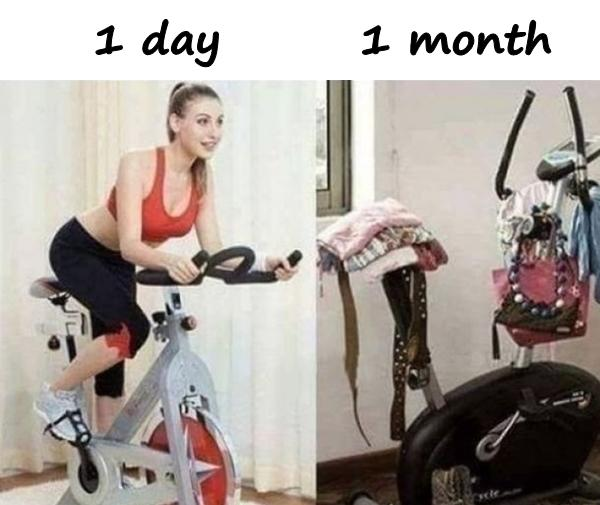 Bike - 1 day vs. 1 month