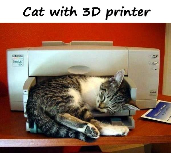Cat with 3D printer