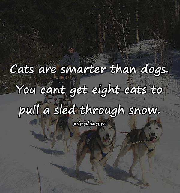 Cats are smarter than dogs. You cant get eight cats to pull a sled through snow.