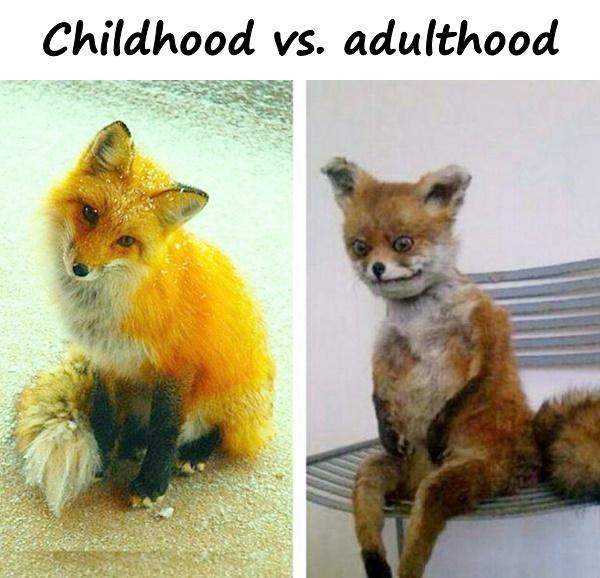Childhood vs. adulthood