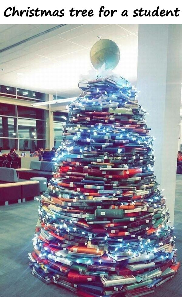 Christmas tree for a student
