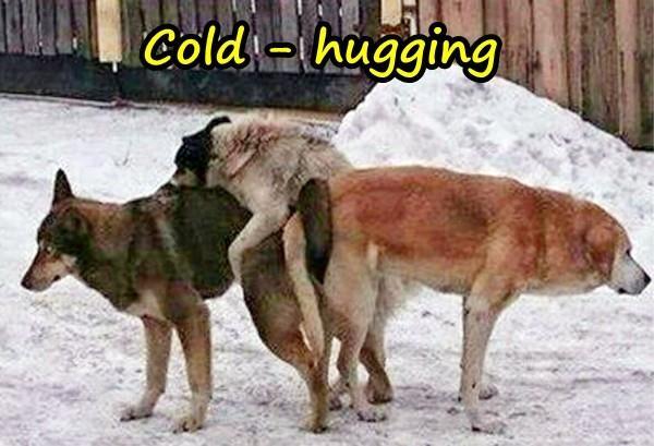 Cold - hugging