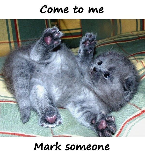 Come to me. Mark someone.