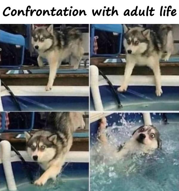 Confrontation with adult life
