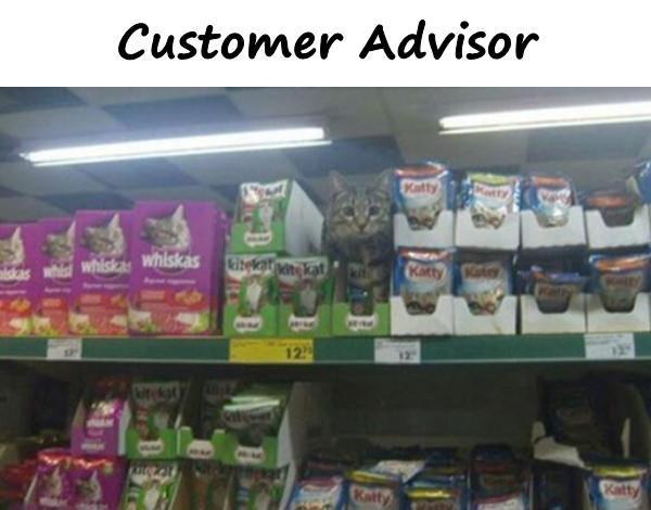 Customer Advisor