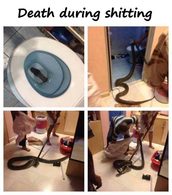Death during shitting