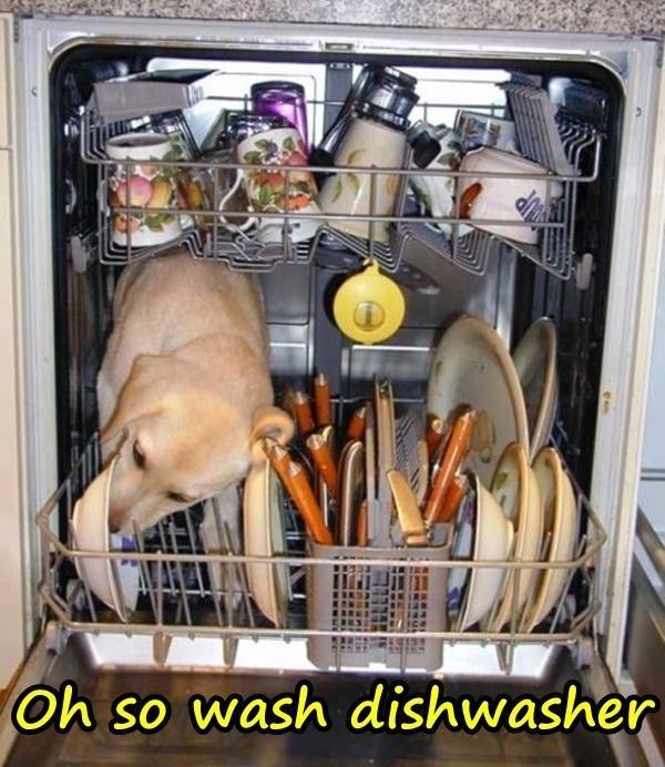 Oh so wash dishwasher