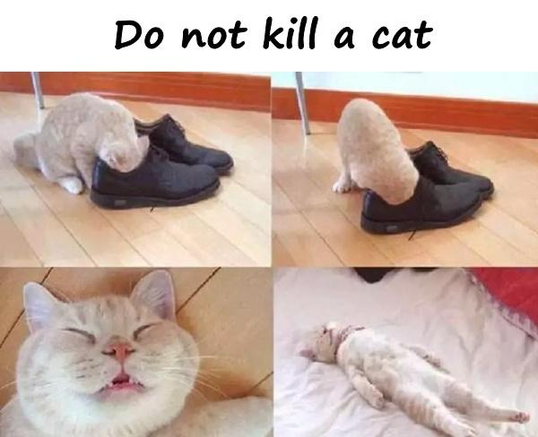 Do not kill a cat