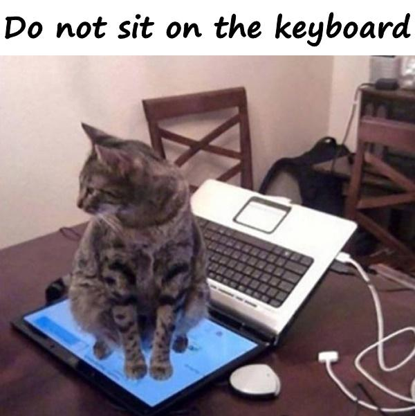 Do not sit on the keyboard