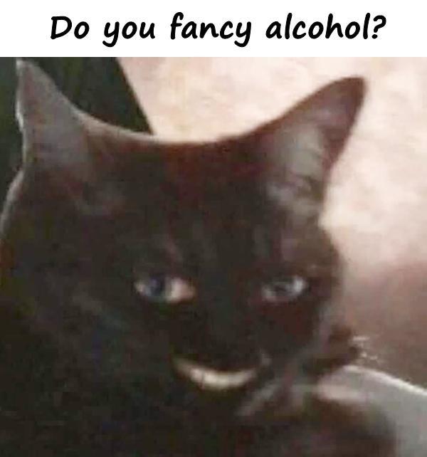Do you fancy alcohol?