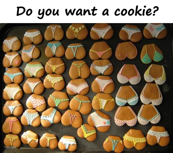 Do you want a cookie?