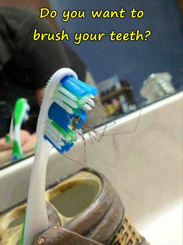 Do you want to brush your teeth?