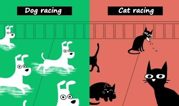 Dog racing vs. Cat racing