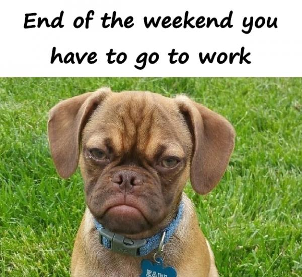 End of the weekend you have to go to work