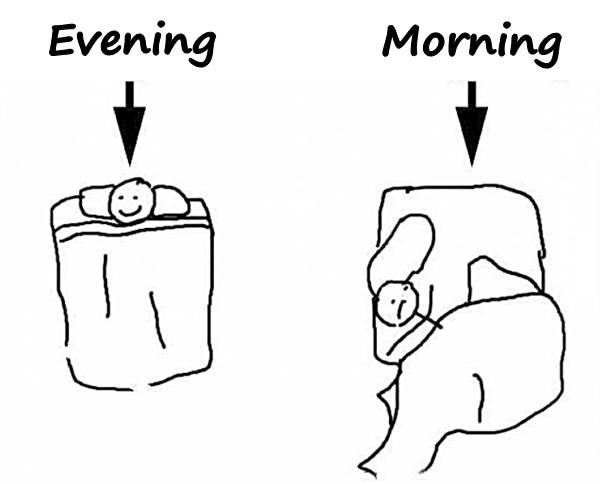 Evening vs. Morning