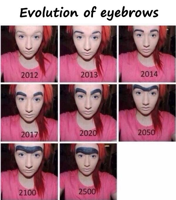 Evolution of eyebrows