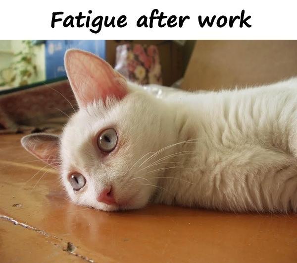 Fatigue after work