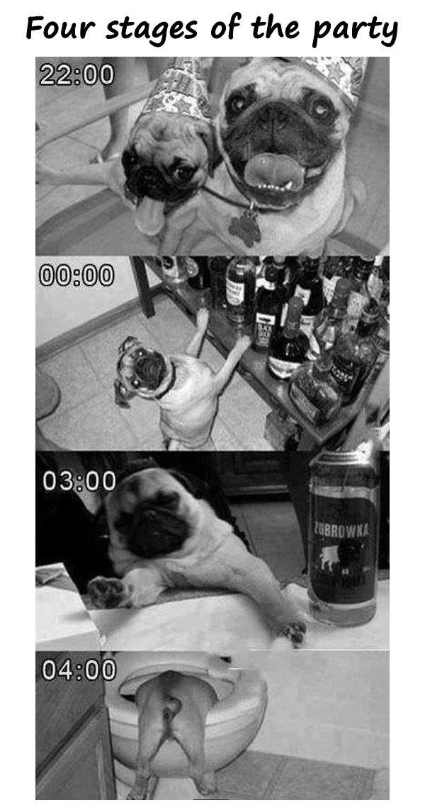 Four stages of the party