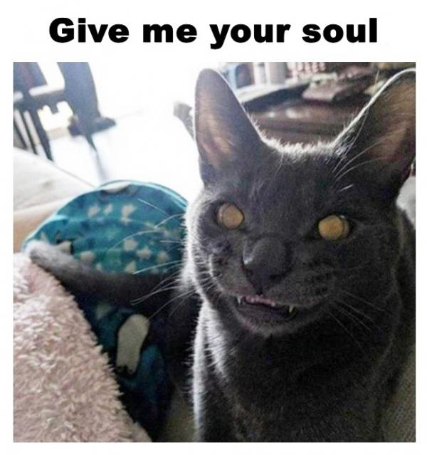 Give me your soul