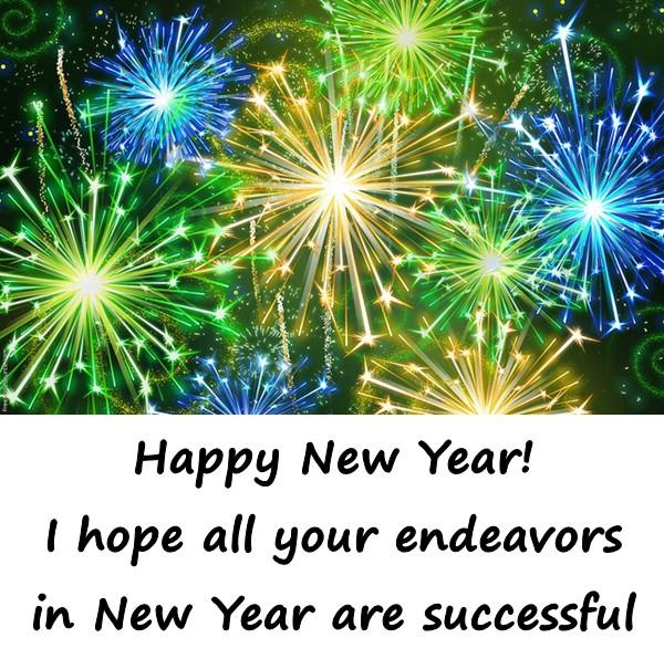 Happy New Year! I hope all your endeavors in New Year are successful.