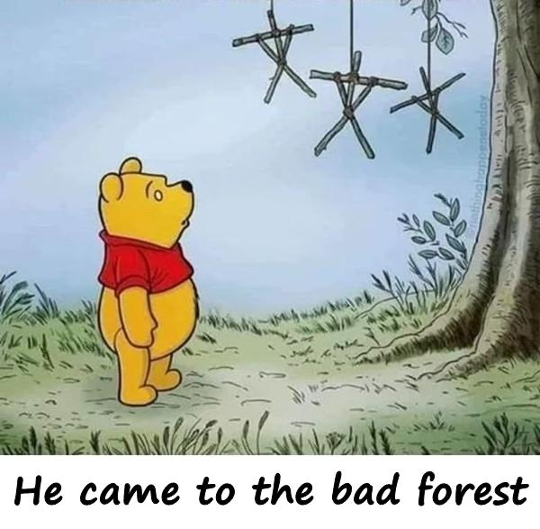 He came to the bad forest
