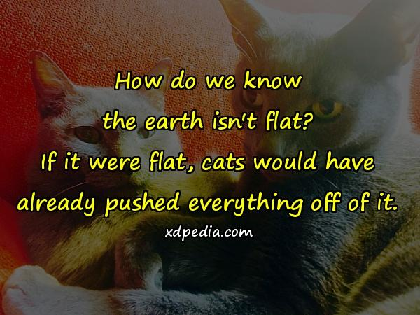 How do we know the earth isn't flat? If it were flat, cats would have already pushed everything off of it.