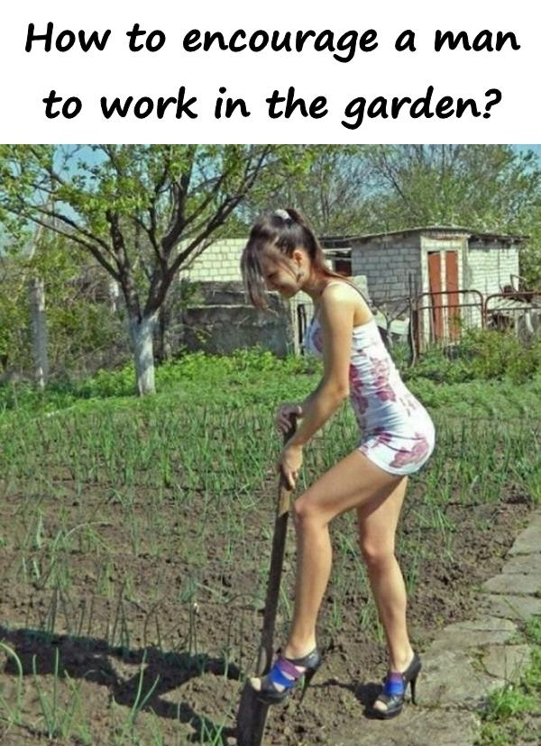 How to encourage a man to work in the garden?