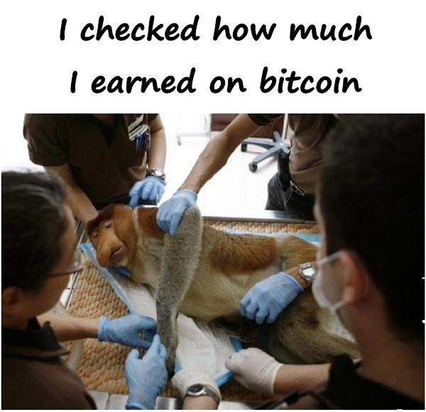 I checked how much I earned on bitcoin