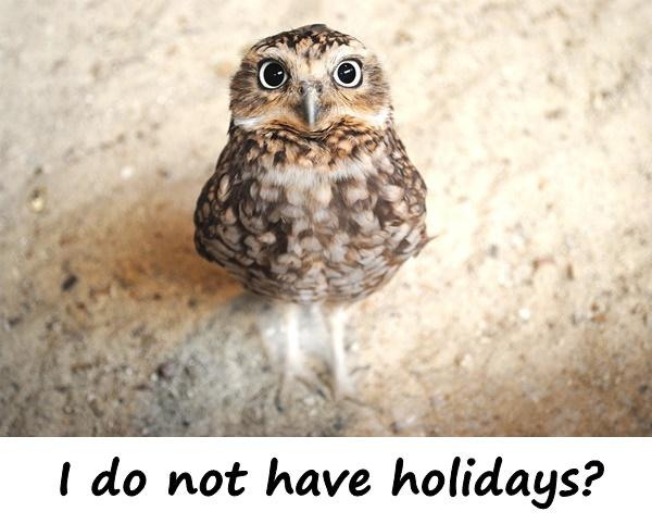 I do not have holidays?