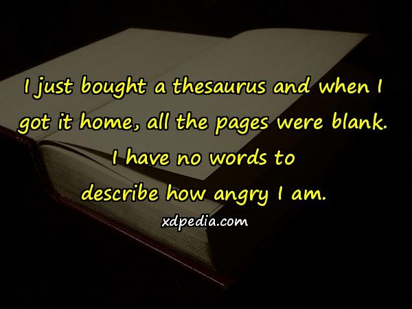 I just bought a thesaurus and when I got it home, all the pages were blank. I have no words to describe how angry I am.