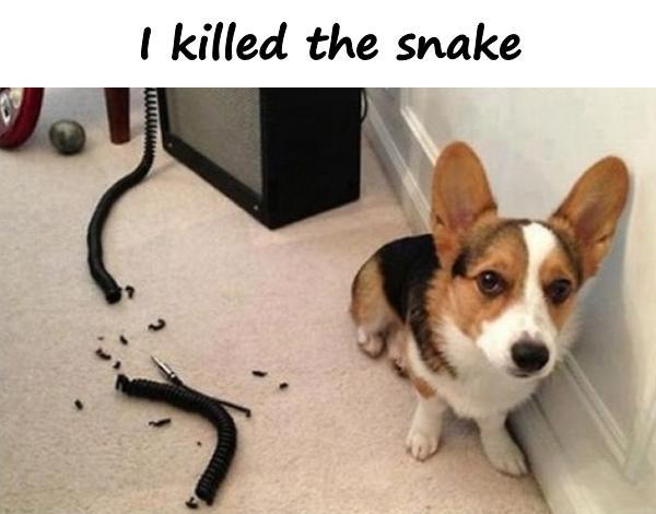 I killed the snake