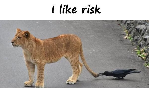 I like risk
